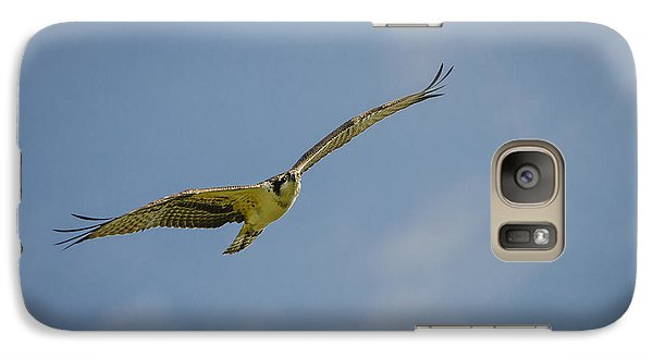 Galaxy Case featuring the photograph Osprey by Bradley Clay