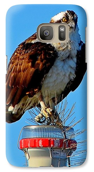 Galaxy Case featuring the photograph Osprey Close-up On Water Navigation Aid by Jeff at JSJ Photography