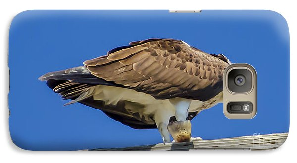 Galaxy Case featuring the photograph Osprey Eating Lunch by Dale Powell