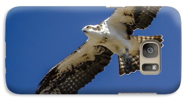 Galaxy Case featuring the photograph Osprey In Flight by Dale Powell