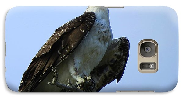 Galaxy Case featuring the photograph Osprey View by Phyllis Beiser