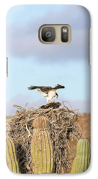 Ospreys Nesting In A Cactus Galaxy S7 Case by Christopher Swann