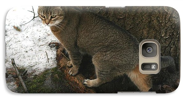 Galaxy Case featuring the photograph Out For A Stroll by Patricia Overmoyer
