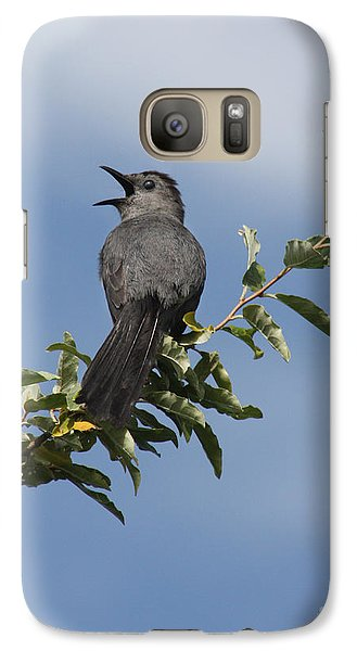 Galaxy Case featuring the photograph Out On A Limb by Anita Oakley