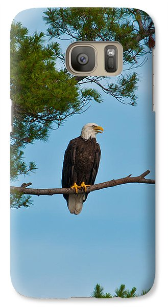 Galaxy Case featuring the photograph Out On A Limb by Brenda Jacobs