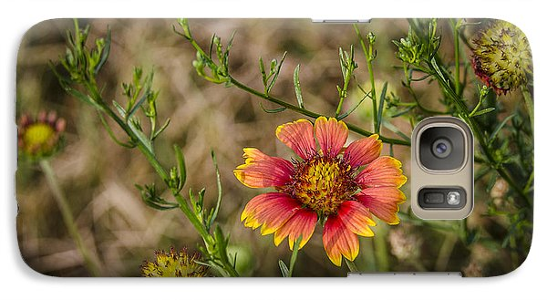 Galaxy Case featuring the photograph Outer Banks Wildflower by Bradley Clay