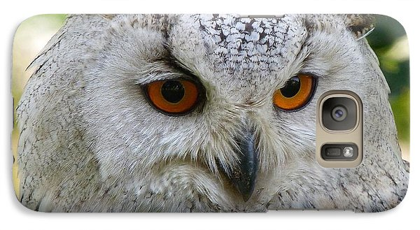 Galaxy Case featuring the photograph Owl Bird Animal Eagle Owl by Paul Fearn