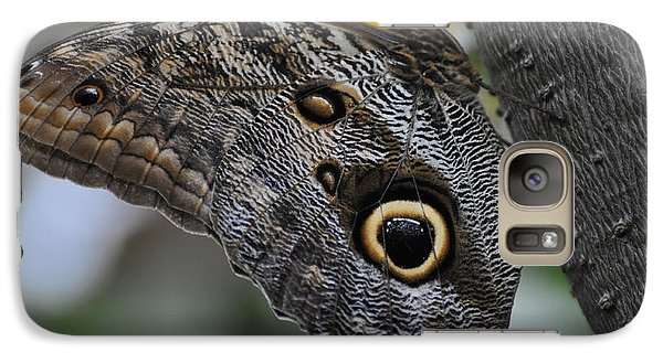 Galaxy Case featuring the photograph Owl Butterfly by Bianca Nadeau