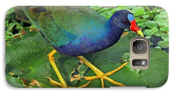 Galaxy Case featuring the photograph Purple Gallinule Feet by Larry Nieland