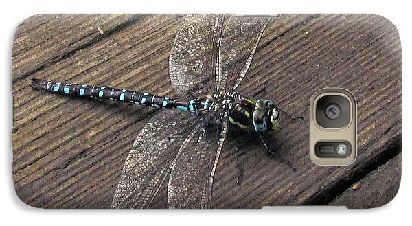 Galaxy Case featuring the photograph Pacific Forktail by I'ina Van Lawick