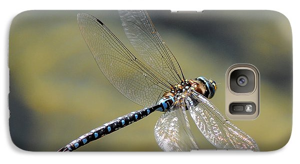 Galaxy Case featuring the photograph Paddletail Darner In Flight by Vivian Christopher