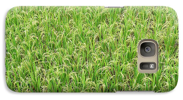 Galaxy Case featuring the photograph Paddy Field by Yew Kwang