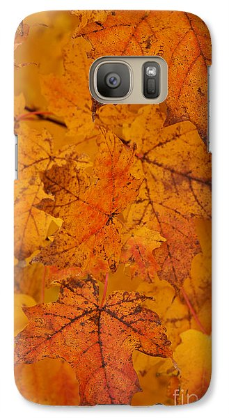 Galaxy Case featuring the photograph Painted Leaves Of Autumn by Linda Shafer