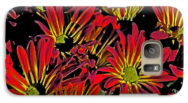 Galaxy Case featuring the photograph Painted Mums by Judy Wolinsky