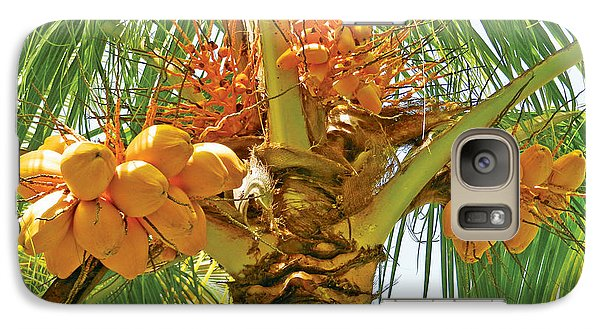 Galaxy Case featuring the photograph Palm Tree With Coconuts by Val Miller