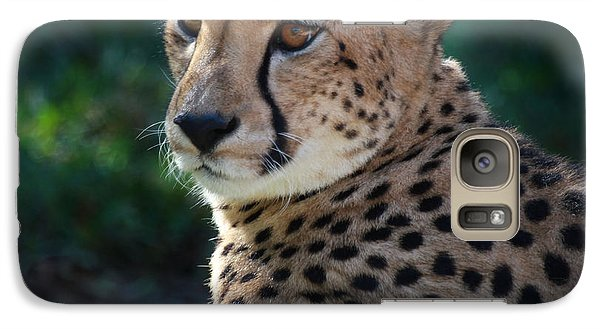 Galaxy Case featuring the photograph Pampered Kitty by Joseph G Holland