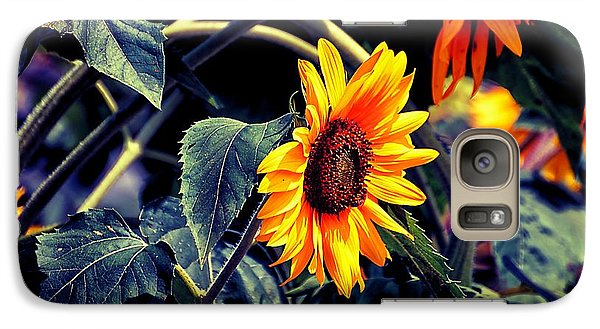 Galaxy Case featuring the photograph Pancoastburg Sunflowers by Beth Akerman