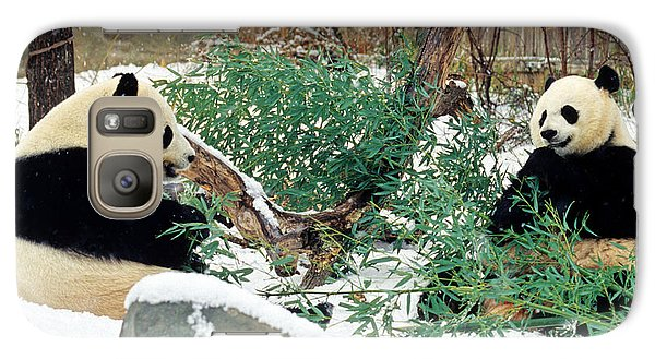 Galaxy Case featuring the photograph Panda Bears In Snow by Chris Scroggins