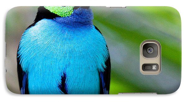 Paradise Tanager Galaxy S7 Case by Nathan Rupert