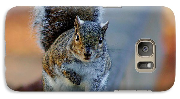 Galaxy Case featuring the photograph Park Squirrel I by Daniel Woodrum