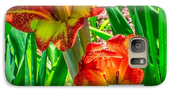 Galaxy Case featuring the photograph Parrot Gladiolus by Rob Sellers