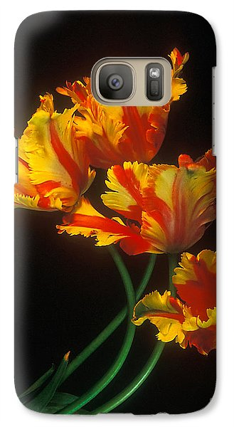 Galaxy Case featuring the photograph Parrot Tulips On Easter Morning Vertical by Arthaven Studios
