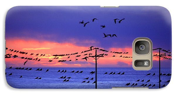 Galaxy Case featuring the photograph Parrots by Bernardo Galmarini