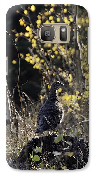Galaxy Case featuring the photograph Partridge On Pine Stump by Daniel Hebard