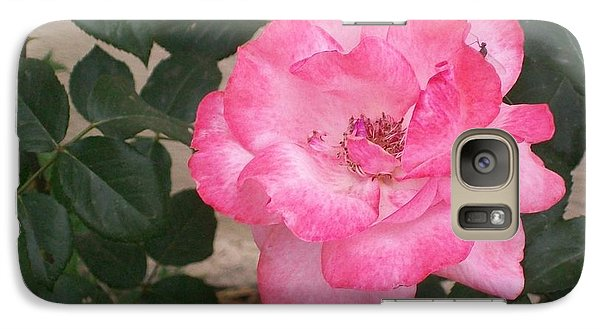 Galaxy Case featuring the photograph Passion Pink by Jewel Hengen
