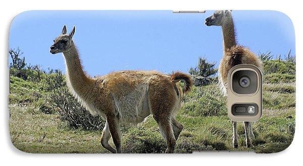 Llama Galaxy S7 Case - Patagonian Guanacos by Michele Burgess