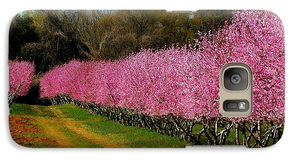 Galaxy Case featuring the photograph Peach Orchard In Carolina by Lydia Holly
