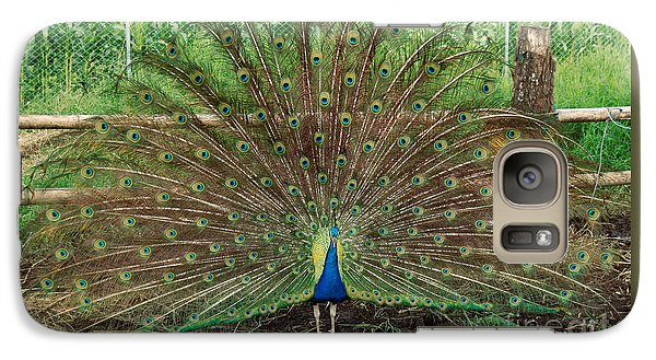 Galaxy Case featuring the photograph Peacock Full Glory by Eva Kaufman