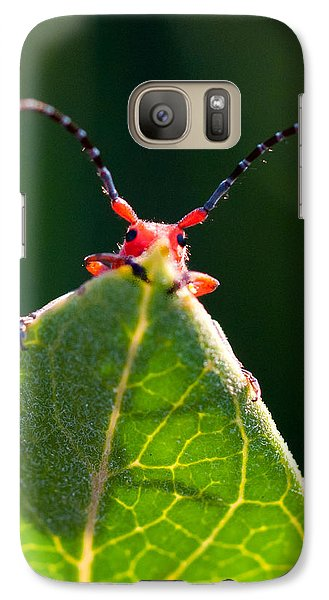 Galaxy Case featuring the photograph Peek-a-boo by Janis Knight