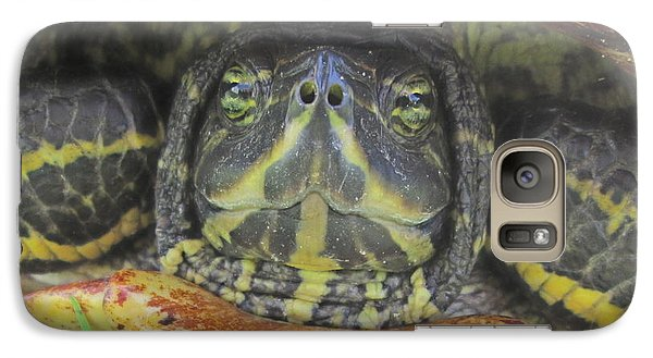 Galaxy Case featuring the photograph Peek A Boo by Judith Morris