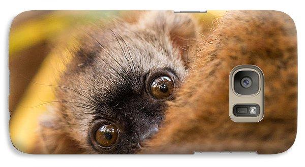 Peekaboo Galaxy S7 Case by Alex Lapidus