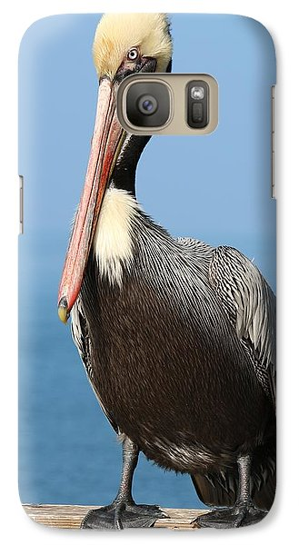 Galaxy Case featuring the photograph Pelican - 3  by Christy Pooschke