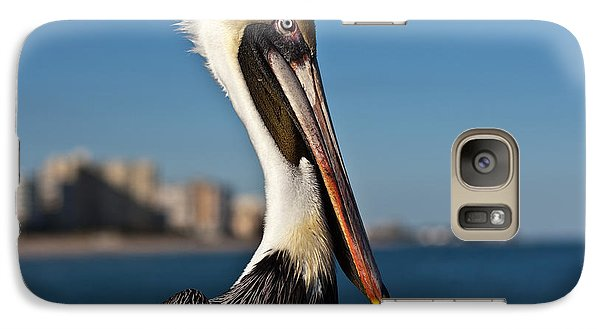 Galaxy Case featuring the photograph Pelican by Barbara McMahon