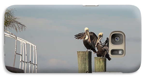 Galaxy Case featuring the photograph Pelican Buddies by John M Bailey