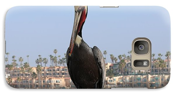 Galaxy Case featuring the photograph Pelican  by Christy Pooschke