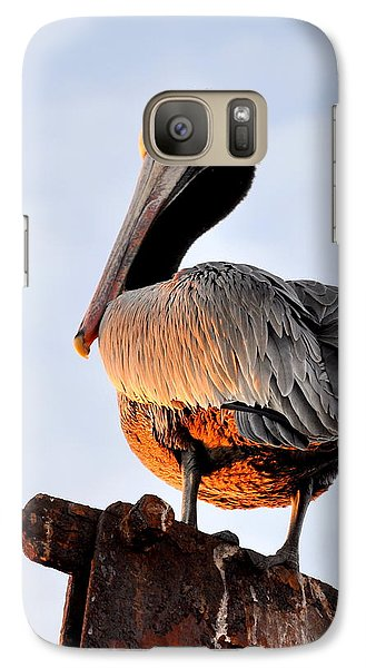 Galaxy Case featuring the photograph Pelican Looking Back by AJ  Schibig