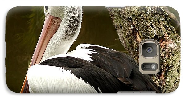 Galaxy Case featuring the photograph Pelican Poise by Maria  Disley
