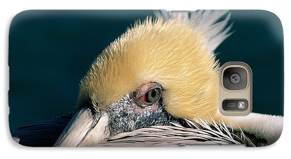 Pelican Portrait Galaxy S7 Case