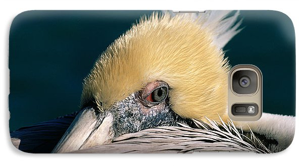 Galaxy Case featuring the photograph Pelican Portrait by Bradford Martin