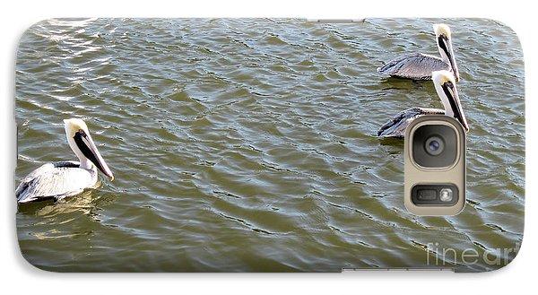 Galaxy Case featuring the photograph Pelicans In Florida by Oksana Semenchenko