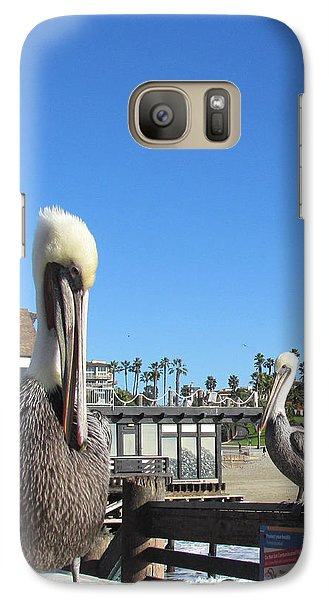 Galaxy Case featuring the photograph Pelicans On Pier by Bonnie Muir