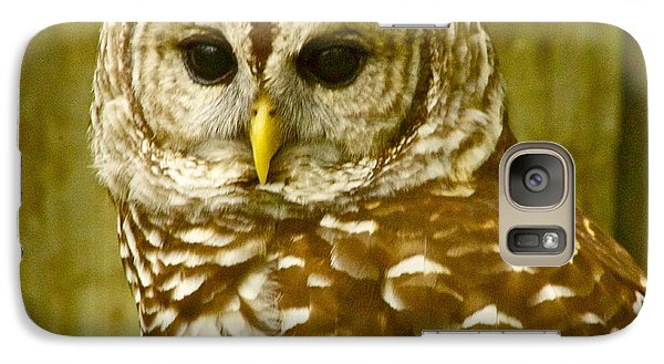 Galaxy Case featuring the photograph Perched by Alice Mainville