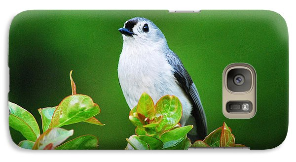 Galaxy Case featuring the photograph Perfect Pose by Linda Segerson