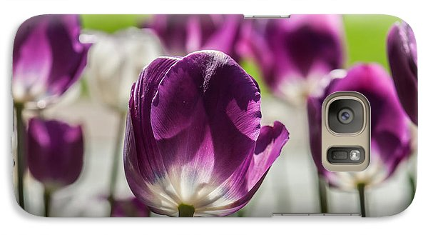 Galaxy Case featuring the photograph Perfect Purple Poster by Jim Moore