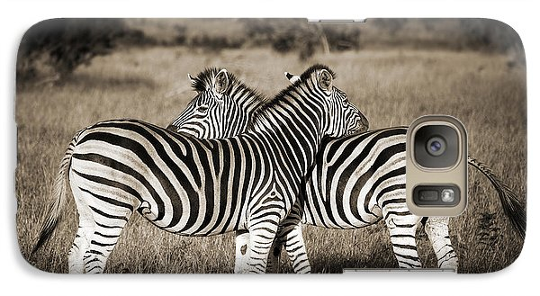 Zebra Galaxy S7 Case - Perfect Zebras by Delphimages Photo Creations