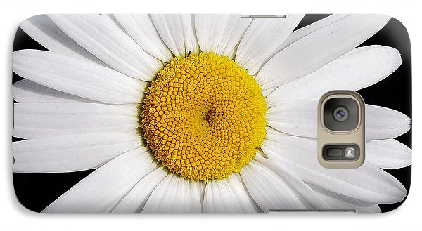 Galaxy Case featuring the photograph Perfectly Daisy by Kathi Mirto